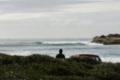 Andrea_Bianchi_Surf_Gozzilla